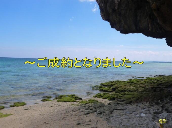 目の前が海~本部町備瀬の売土地