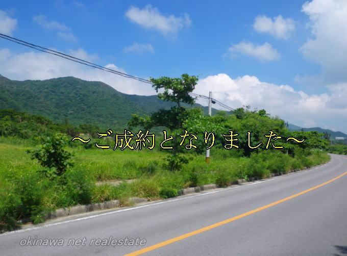 石垣島の県道沿いの売土地