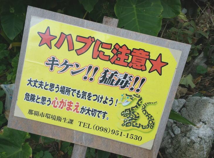 沖縄でハブにかまれない歩き方