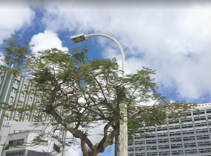 沖縄の働き方改革