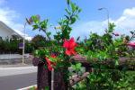 沖縄の不動産売買における公共下水道vs浄化槽