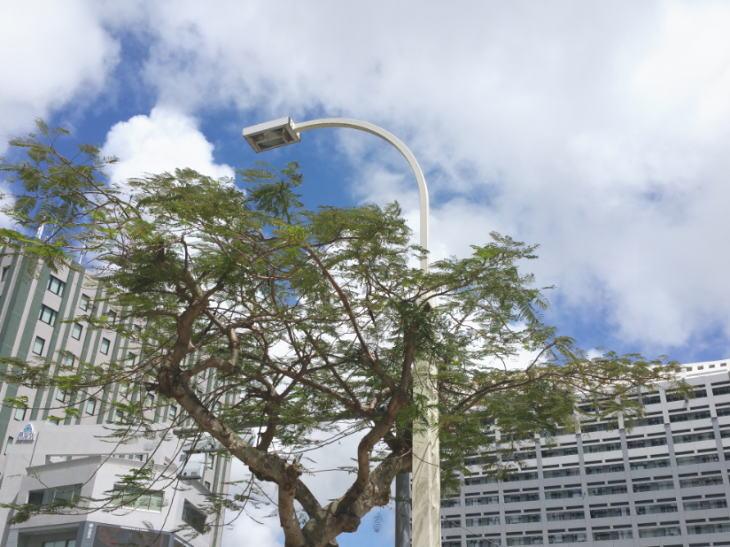 沖縄の新築分譲マンションがまたまた大幅値引き