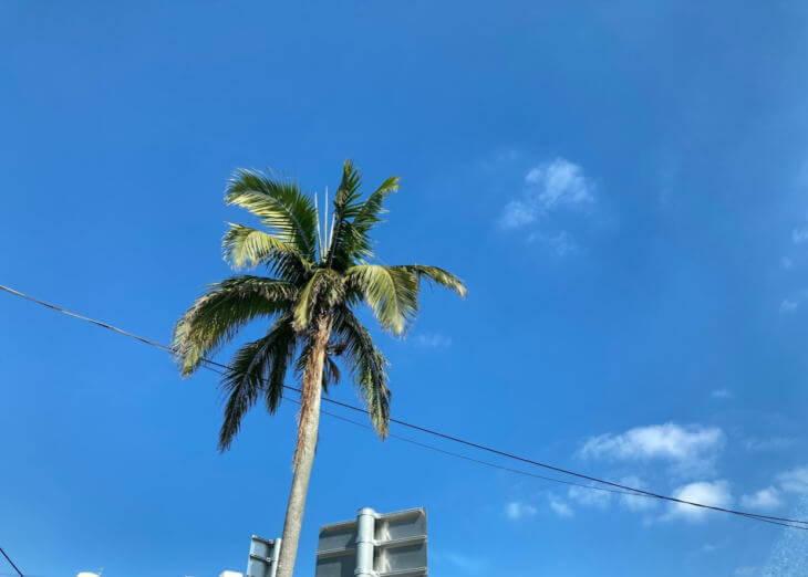 借地人より地主の立場が強い沖縄の不動産