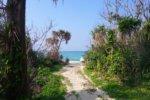 沖縄の海沿いの眺望が貴重な理由