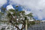 沖縄の不動産契約の中途解約に伴う違約金について